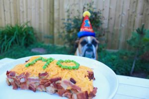 Dog birthday cake bison and bacon-3