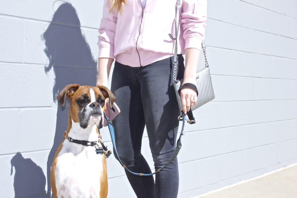 Dog Mom Style-2