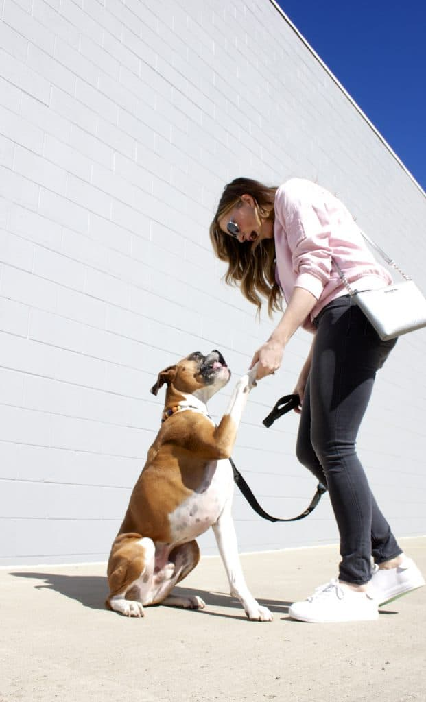 Dog Mom Style-8