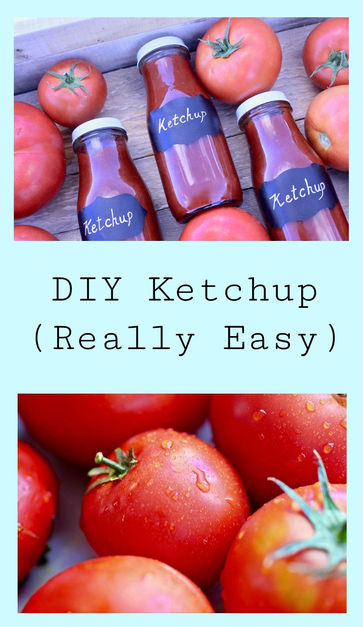 DIY Ketchup-9