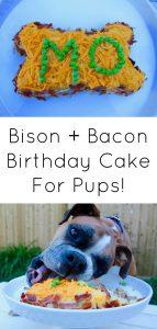 Dog birthday cake bison and bacon-8