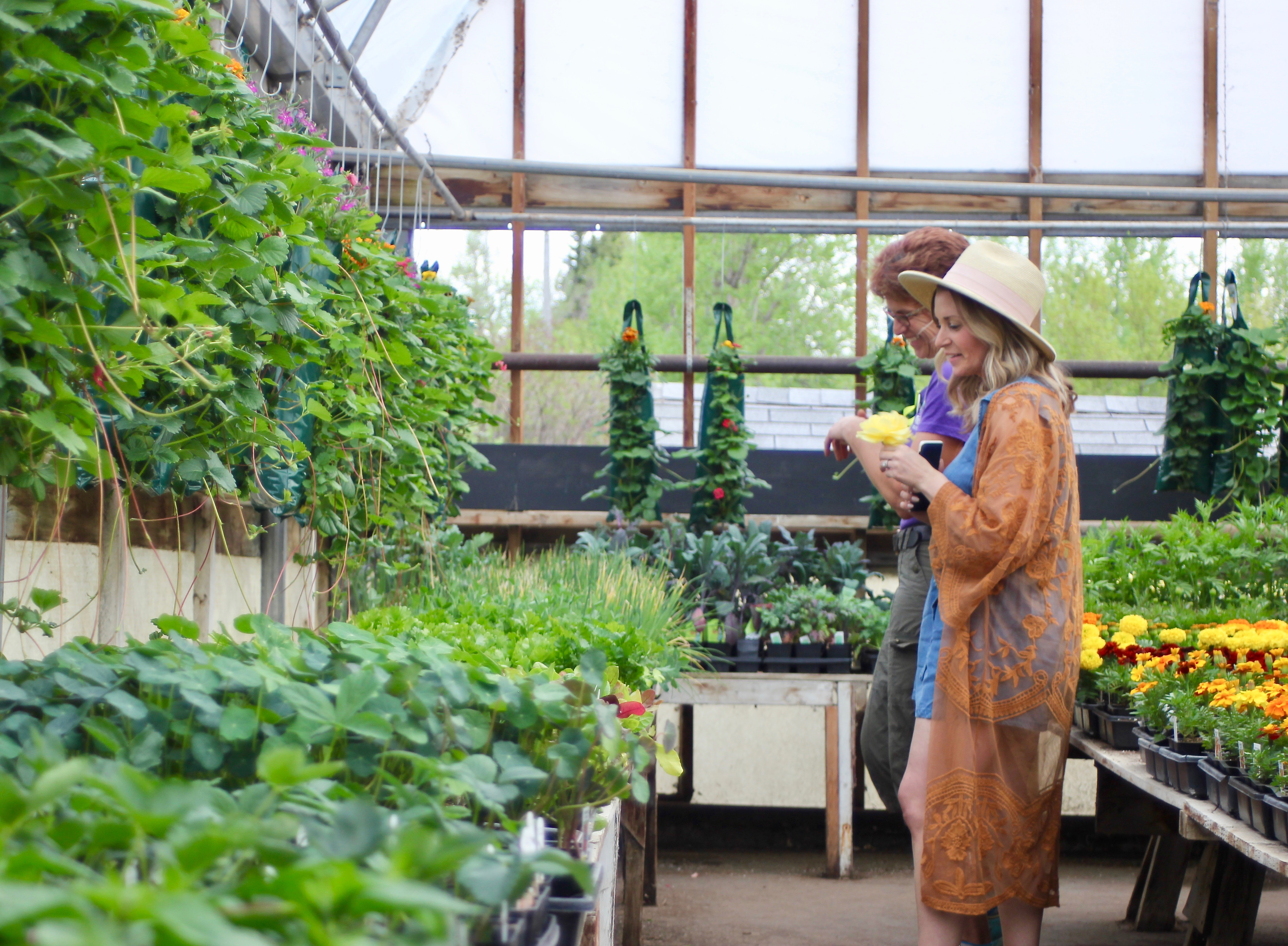 tips for savvy new gardeners-9