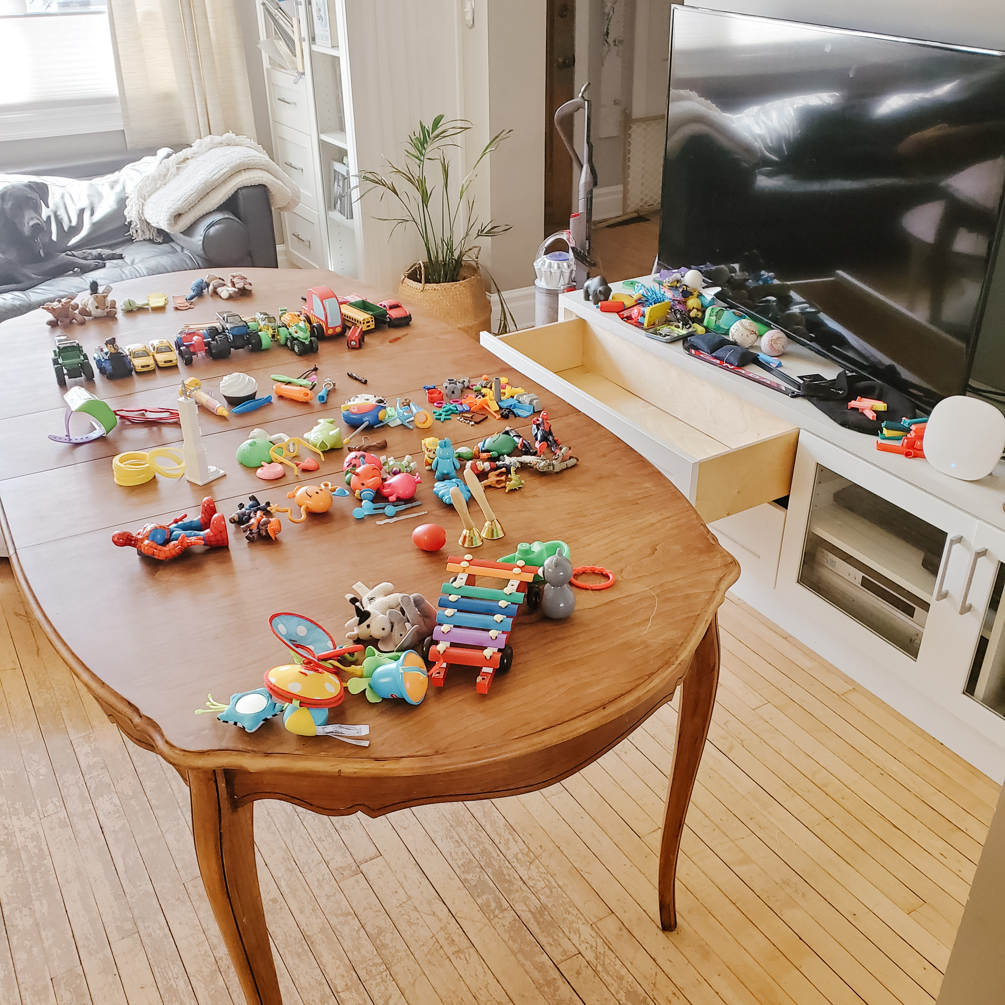 the best way to do a toy purge-3