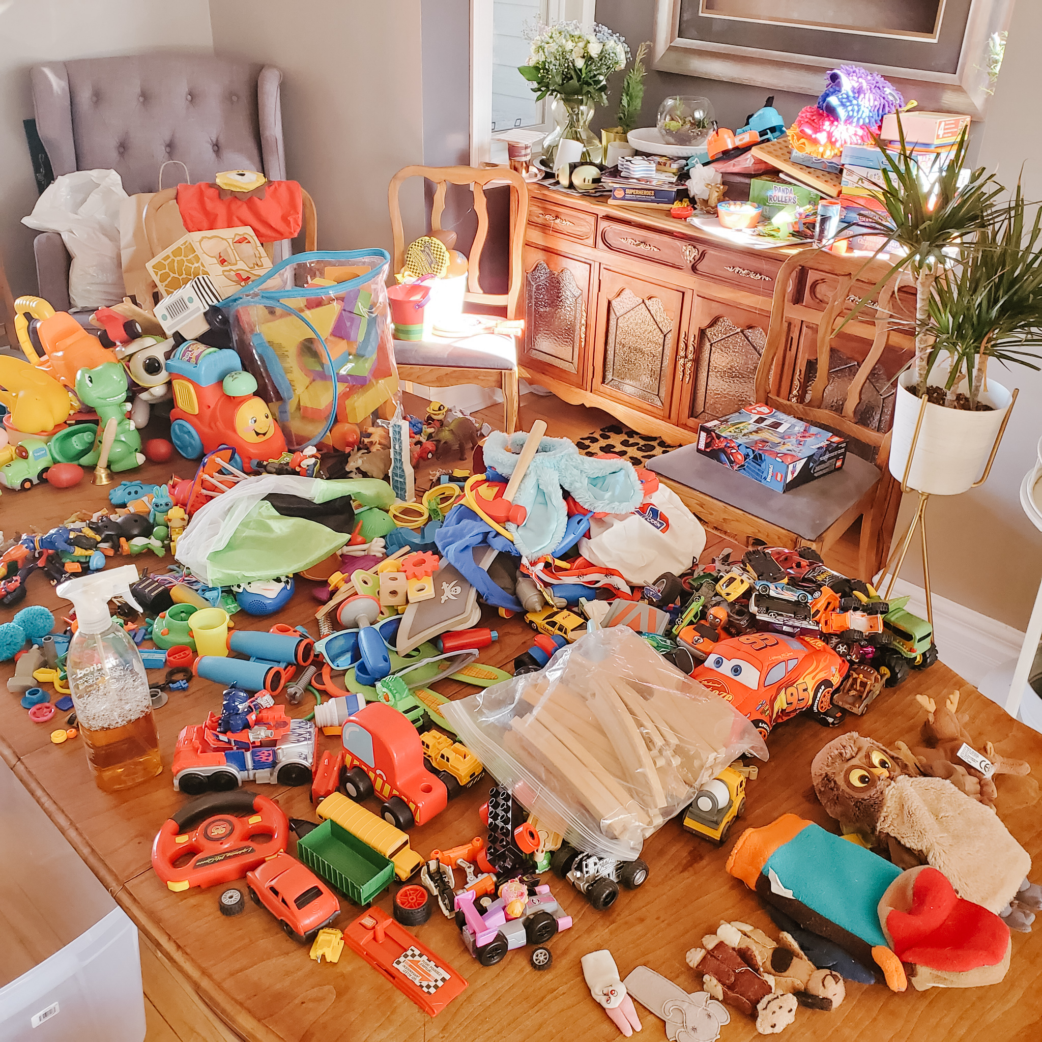 the best way to do a toy purge-2