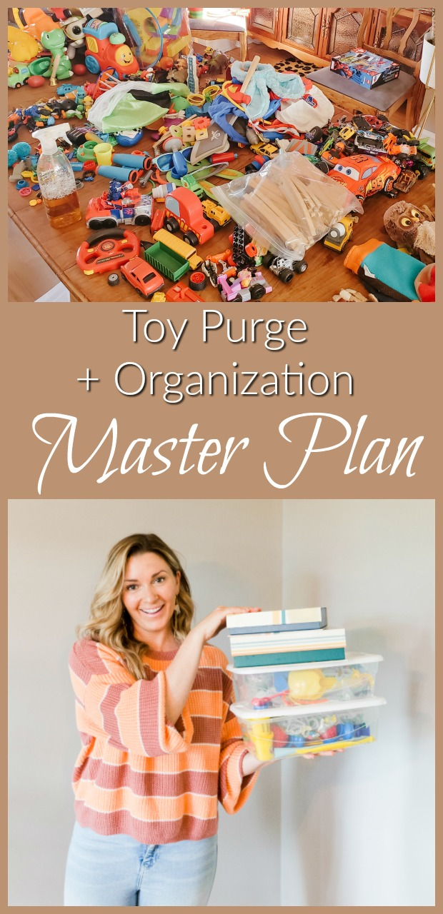 the best way to do a toy purge-9